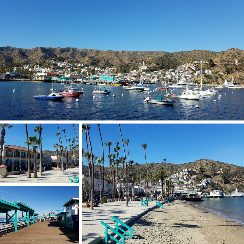 Catalina Island, Excursions in Catalina Island, Catalina Island Excursions
