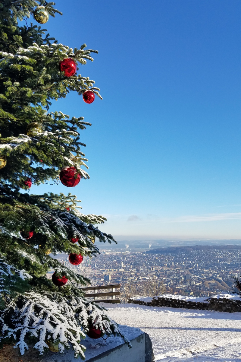 Uetliberg, Zurich in December