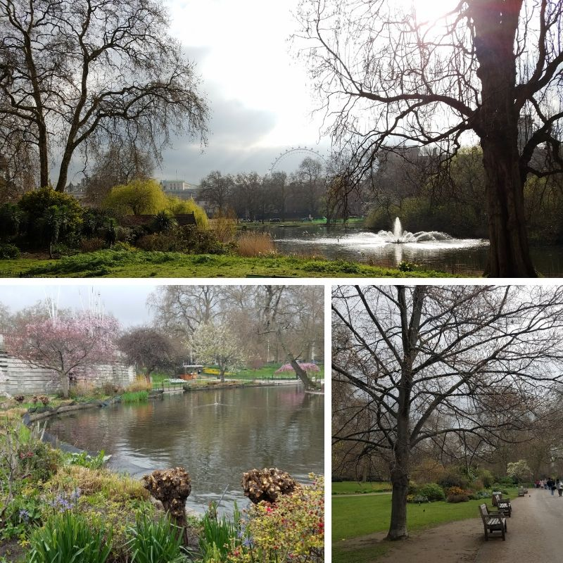 St. James Park, Fountain, Pond, Walking Path with benches