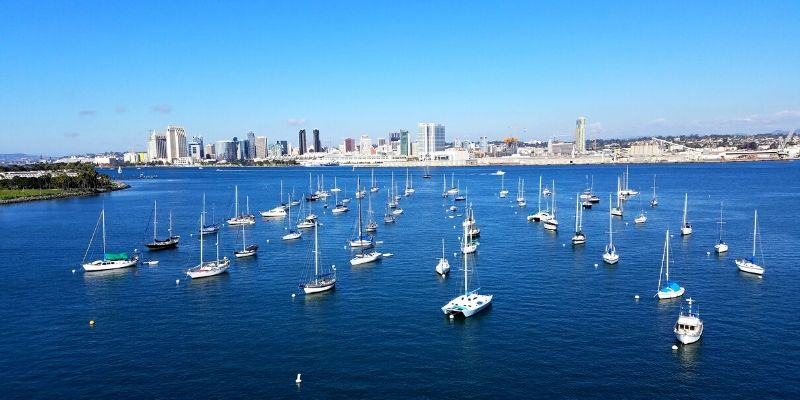 Boats lined up in the water looking at the San Diego Skyline